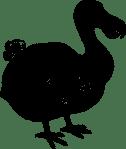 Dodo-mauritius